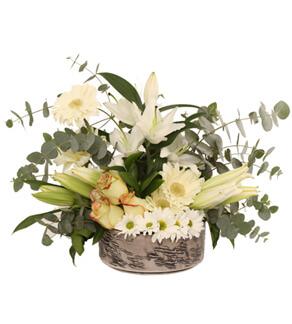 Merter Çiçekçi